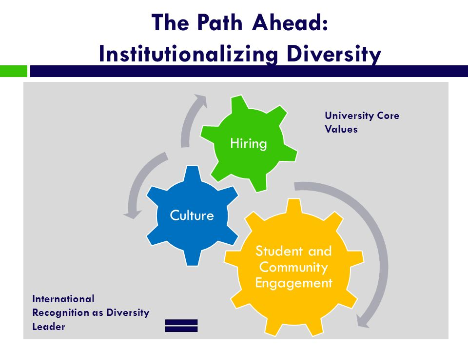 The Path Ahead: Institutionalizing Diversity