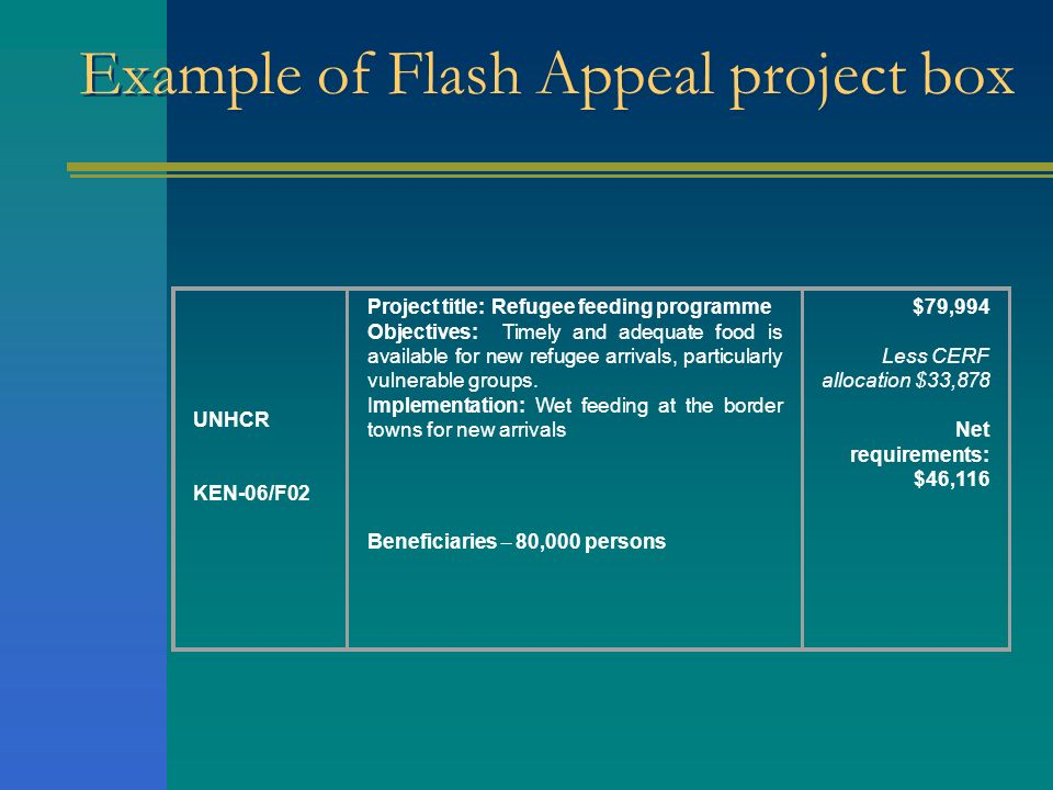 Example of Flash Appeal project box