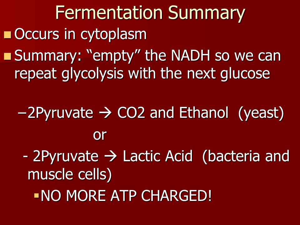 Fermentation Summary Occurs in cytoplasm