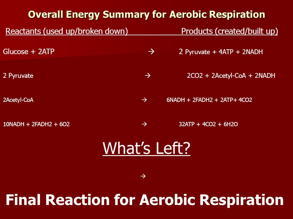Overall Energy Summary for Aerobic Respiration