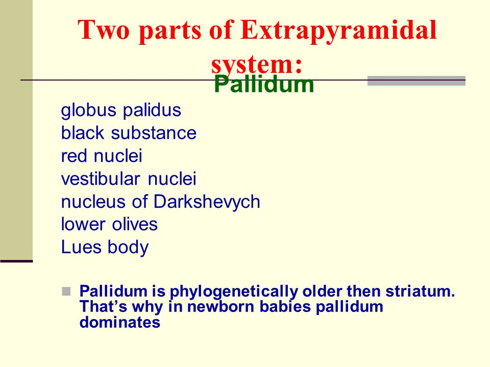 two parts of extrapyramidal system