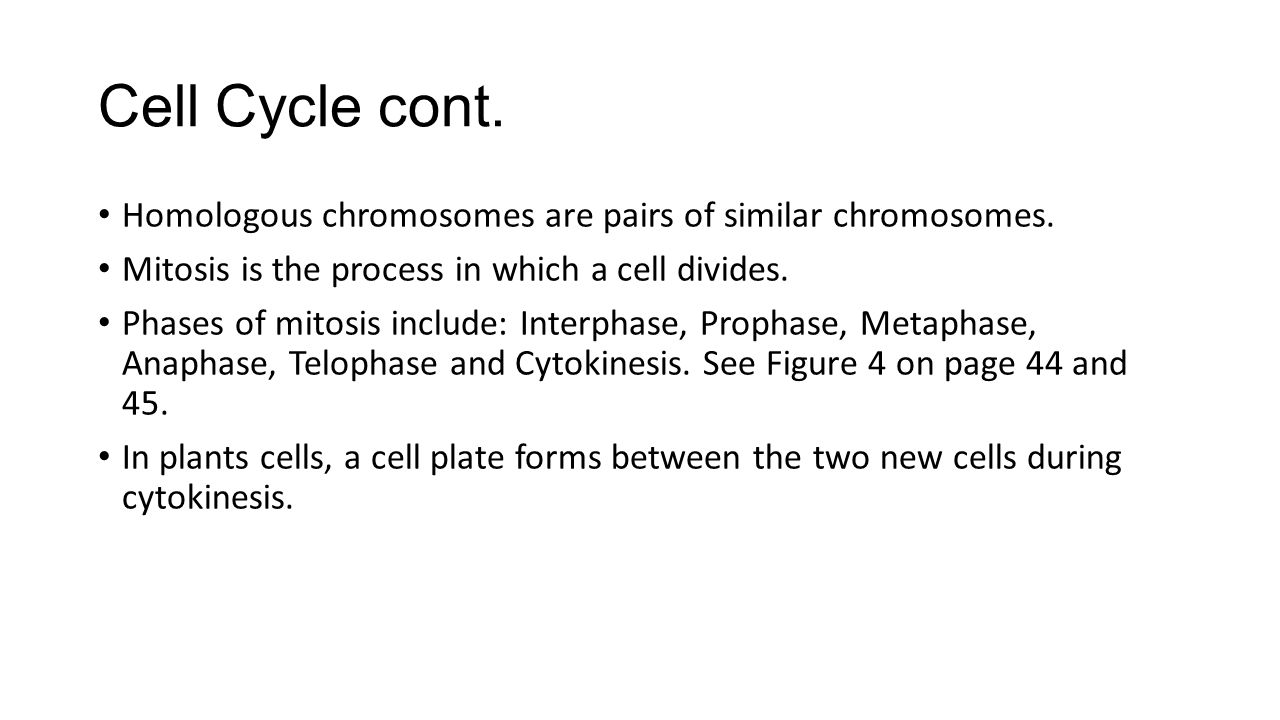 Cell Cycle cont. Homologous chromosomes are pairs of similar chromosomes. Mitosis is the process in which a cell divides.