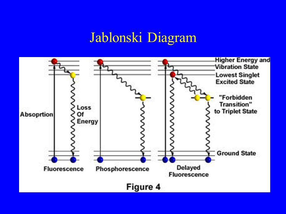 Fundamentals of fluorescence microscopy ppt video online download 5 jablonski diagram ccuart Images