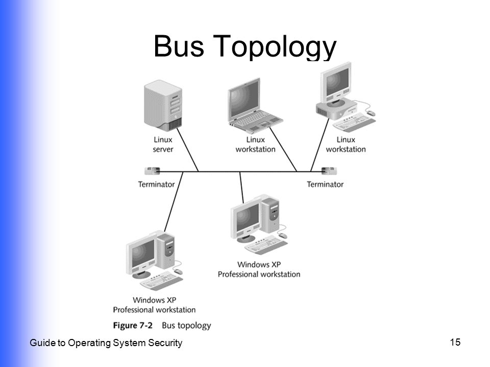 Physical and network topology security ppt video online download 15 bus topology guide to operating system security publicscrutiny Image collections