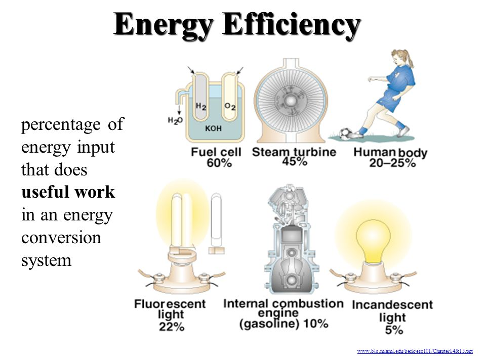 Energy Efficiency percentage of energy input that does useful work in an energy conversion system.