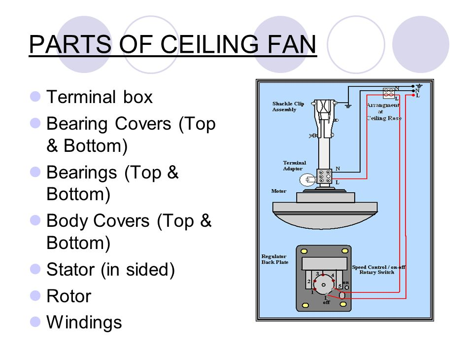 Parts Of Ceiling Fan Terminal Box Bearing Covers Top Bottom