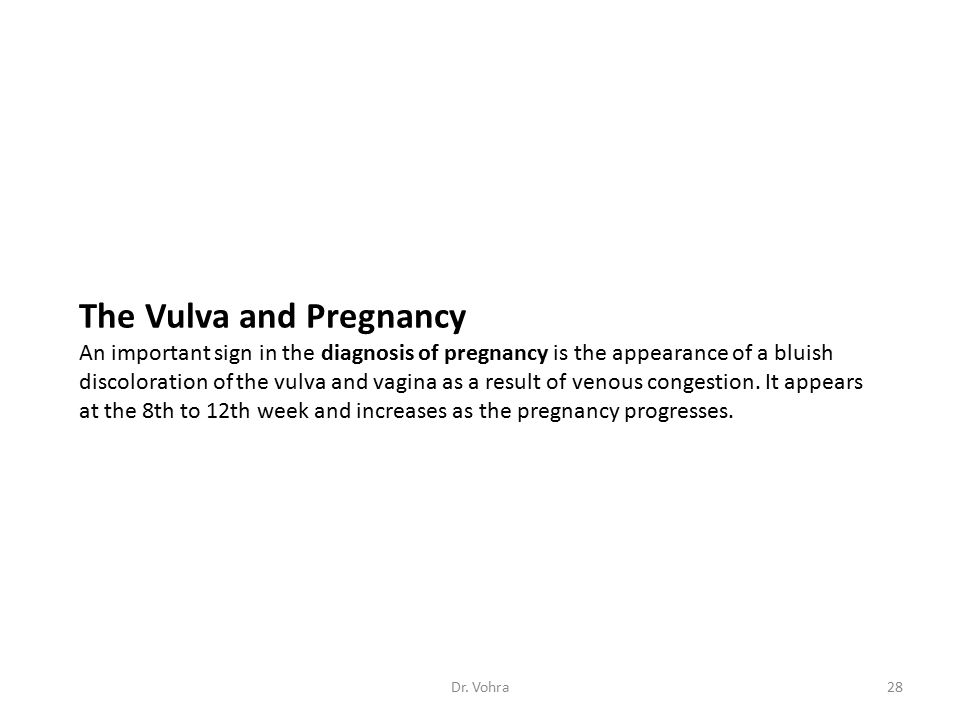 The Vulva and Pregnancy