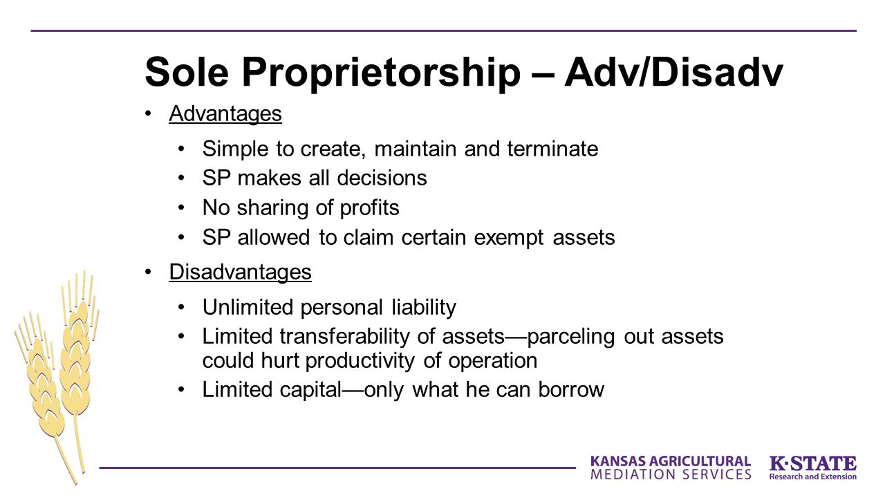 Sole Proprietorship – Adv/Disadv
