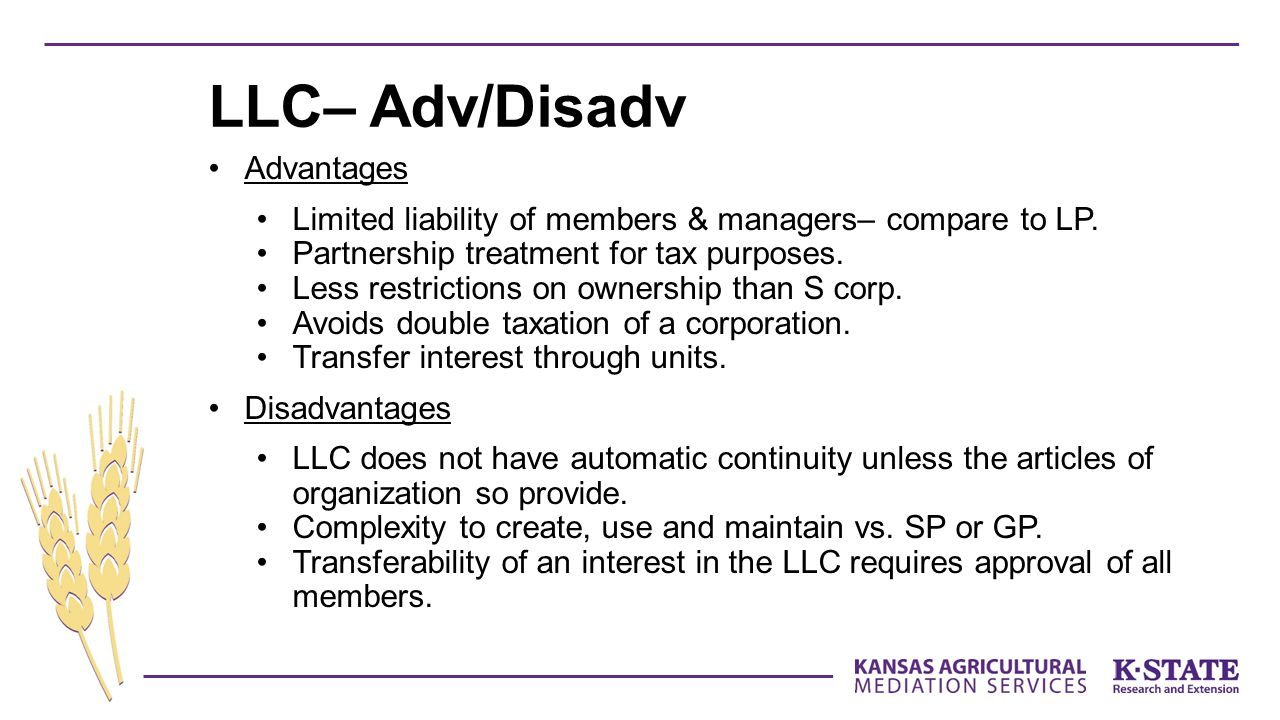 LLC– Adv/Disadv Advantages