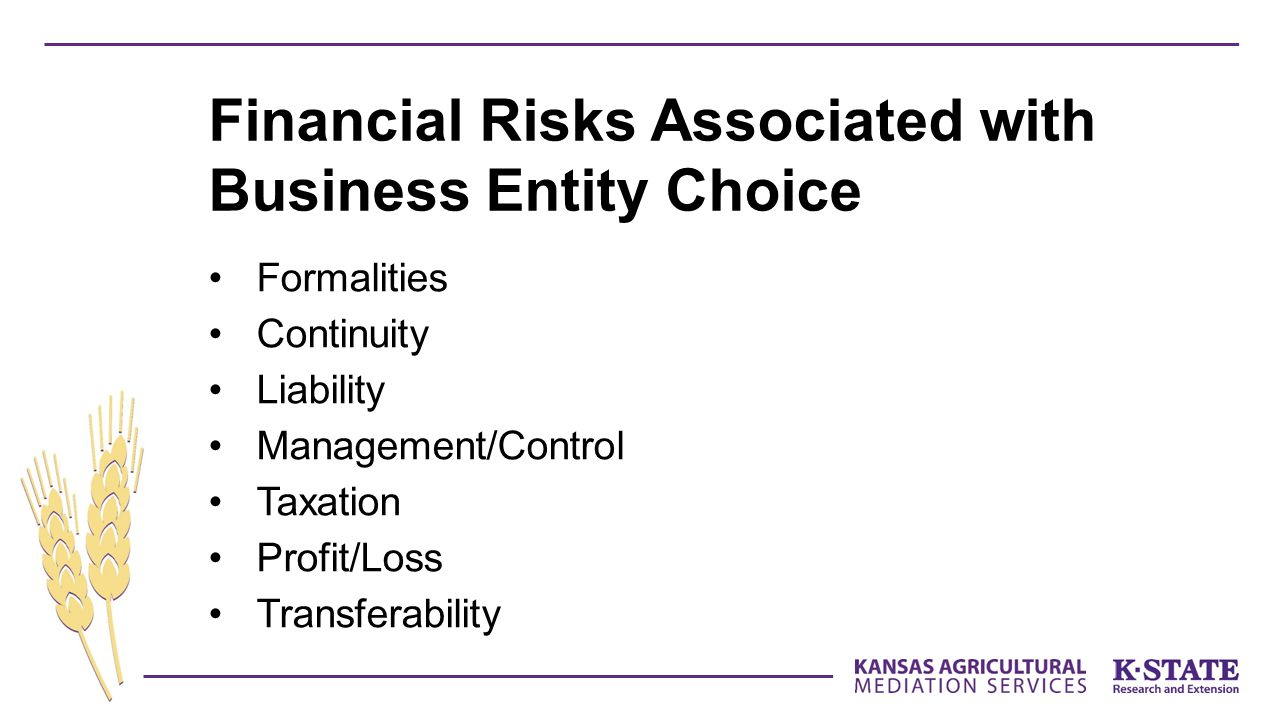 Financial Risks Associated with Business Entity Choice