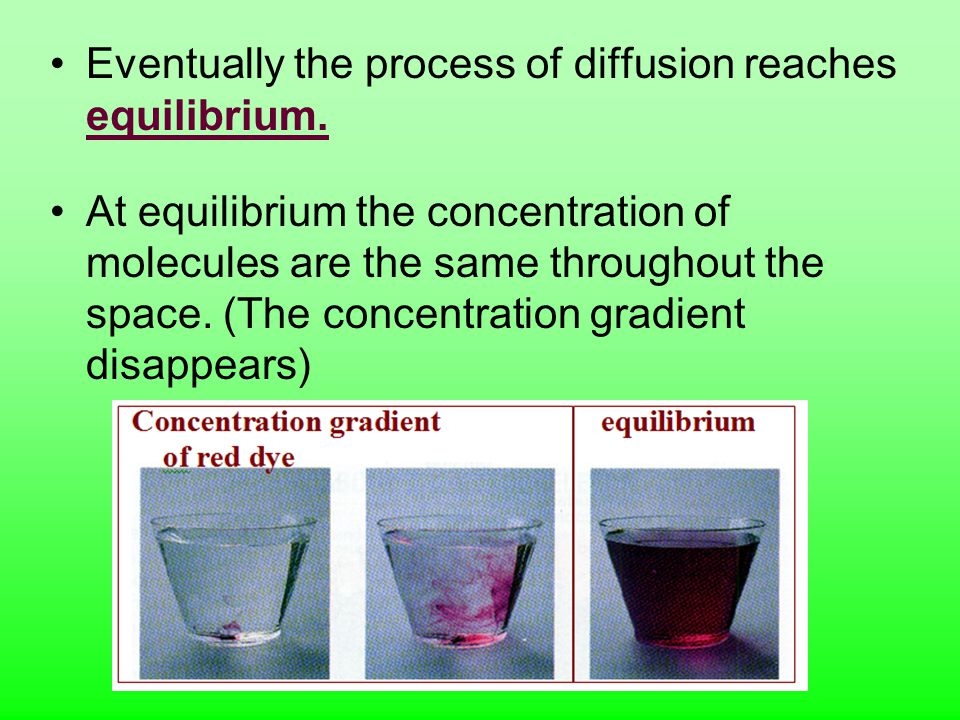 Eventually the process of diffusion reaches equilibrium.
