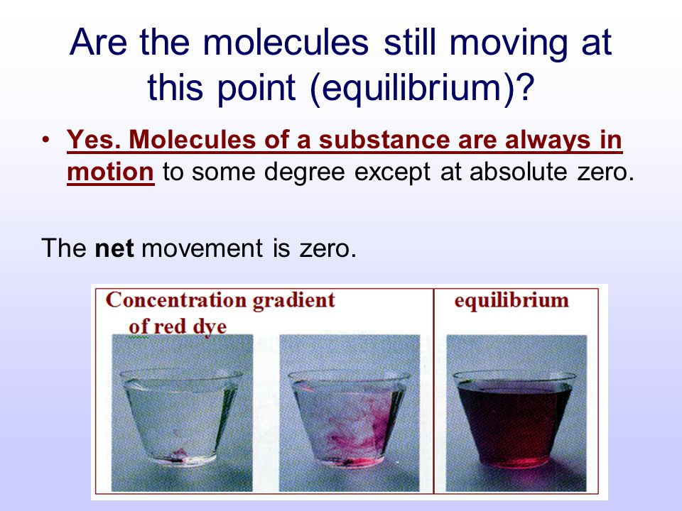 Are the molecules still moving at this point (equilibrium)