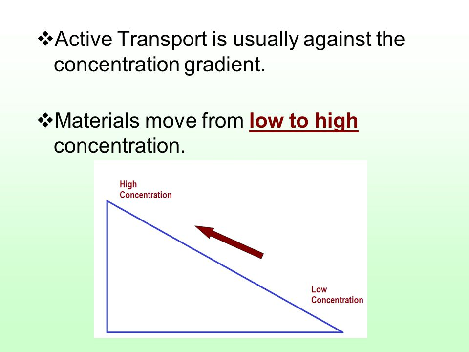 Active Transport is usually against the concentration gradient.