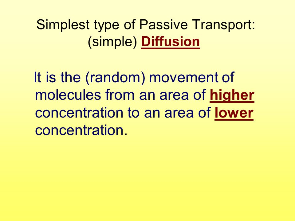 Simplest type of Passive Transport: (simple) Diffusion
