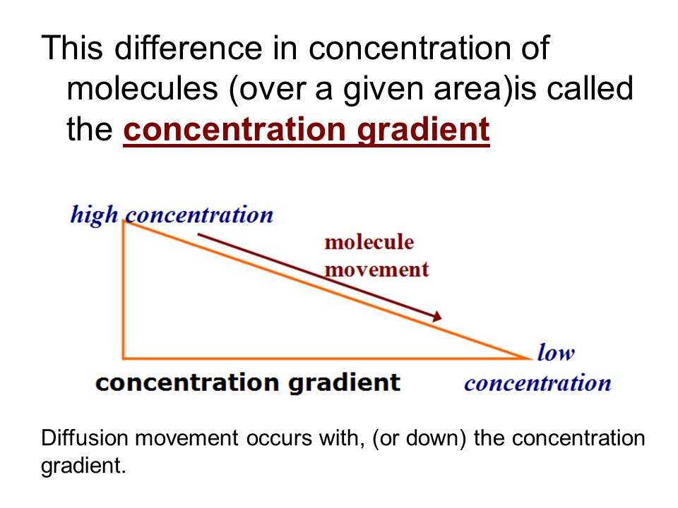 This difference in concentration of molecules (over a given area)is called the concentration gradient