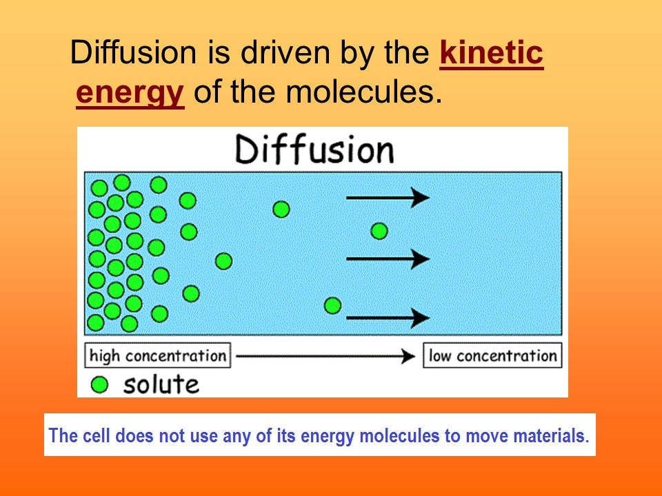 Diffusion is driven by the kinetic energy of the molecules.