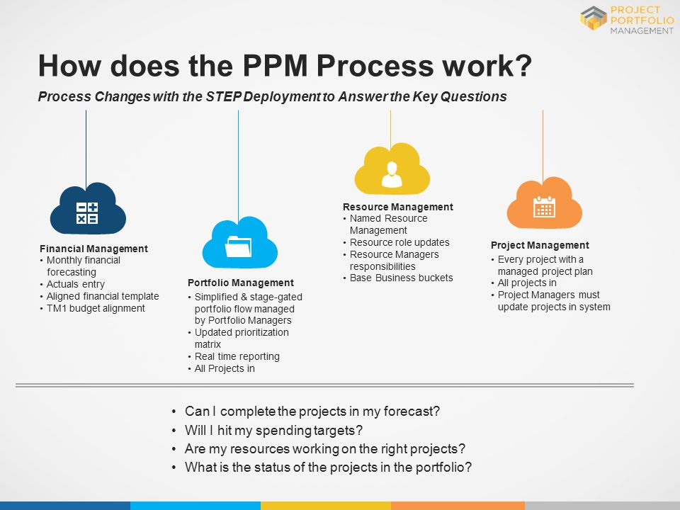 ppm training project portfolio management process
