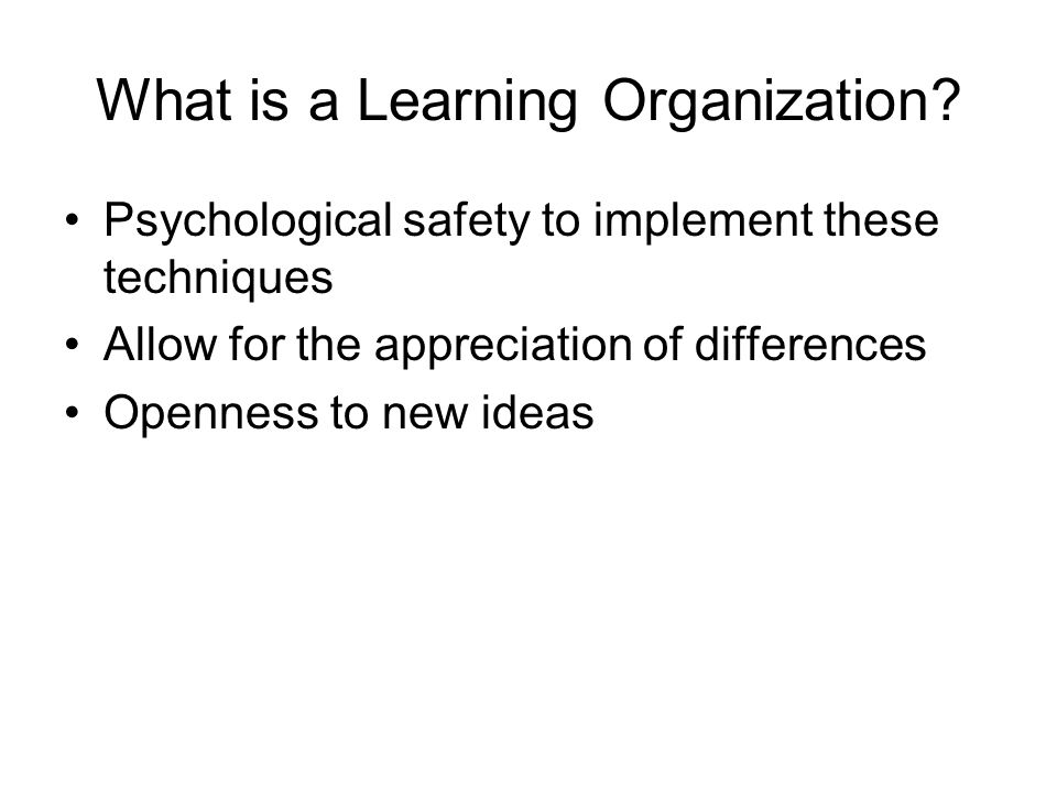 What is a Learning Organization
