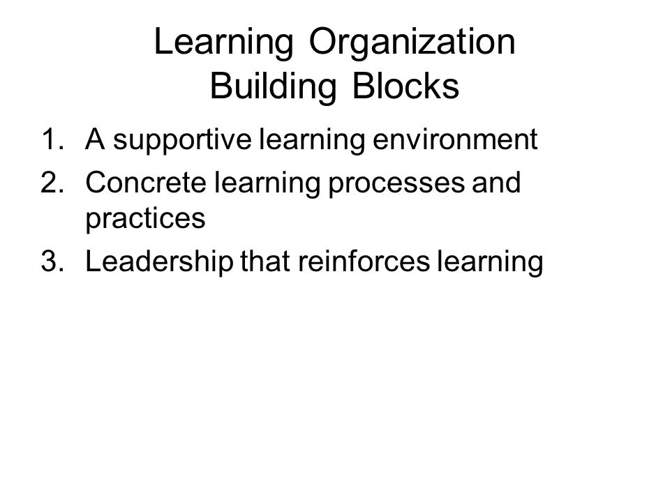 Learning Organization Building Blocks