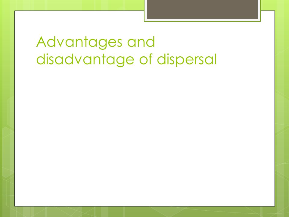 what is seed dispersal and why is it important