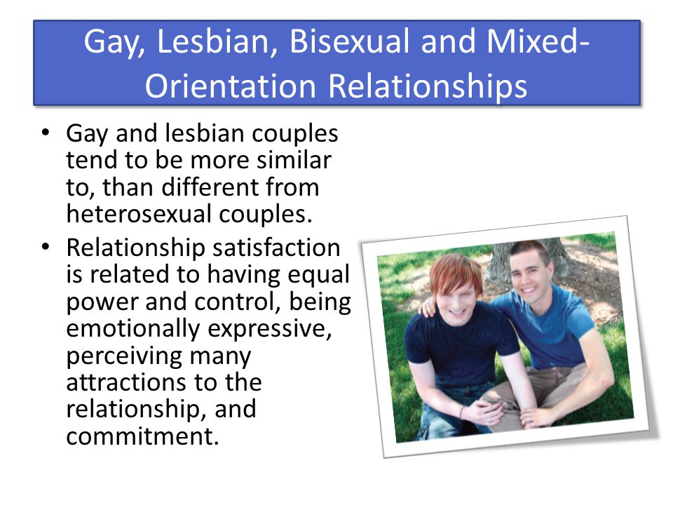 Gay and lesbian couples tend to be more similar than different from heterosexual couples