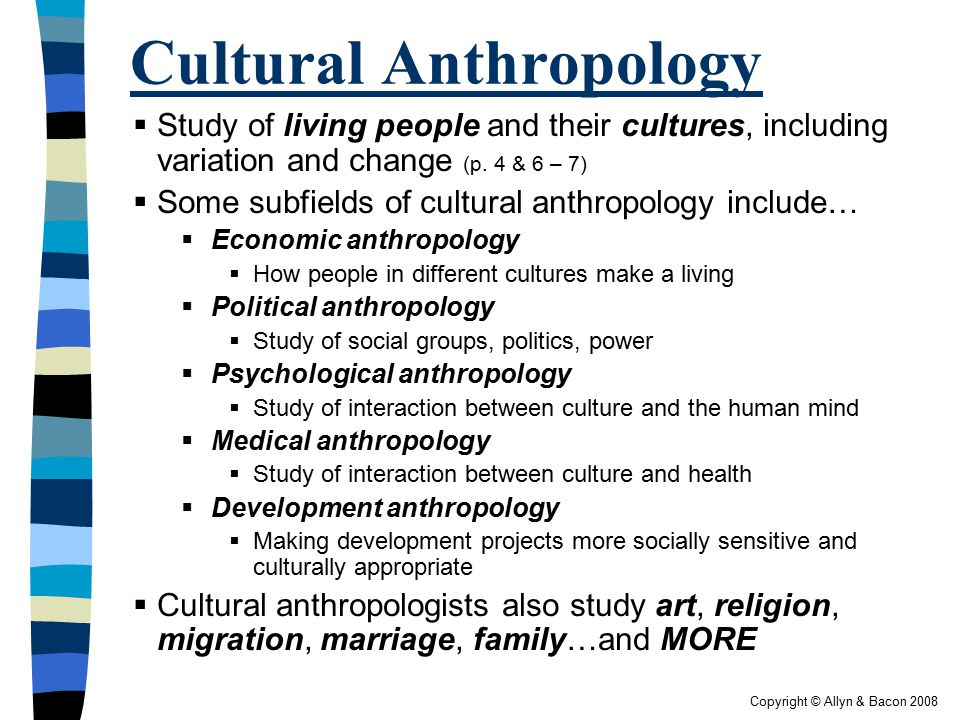 four major subfields of anthropology