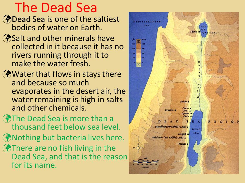 The Dead Sea Dead Sea is one of the saltiest bodies of water on Earth.