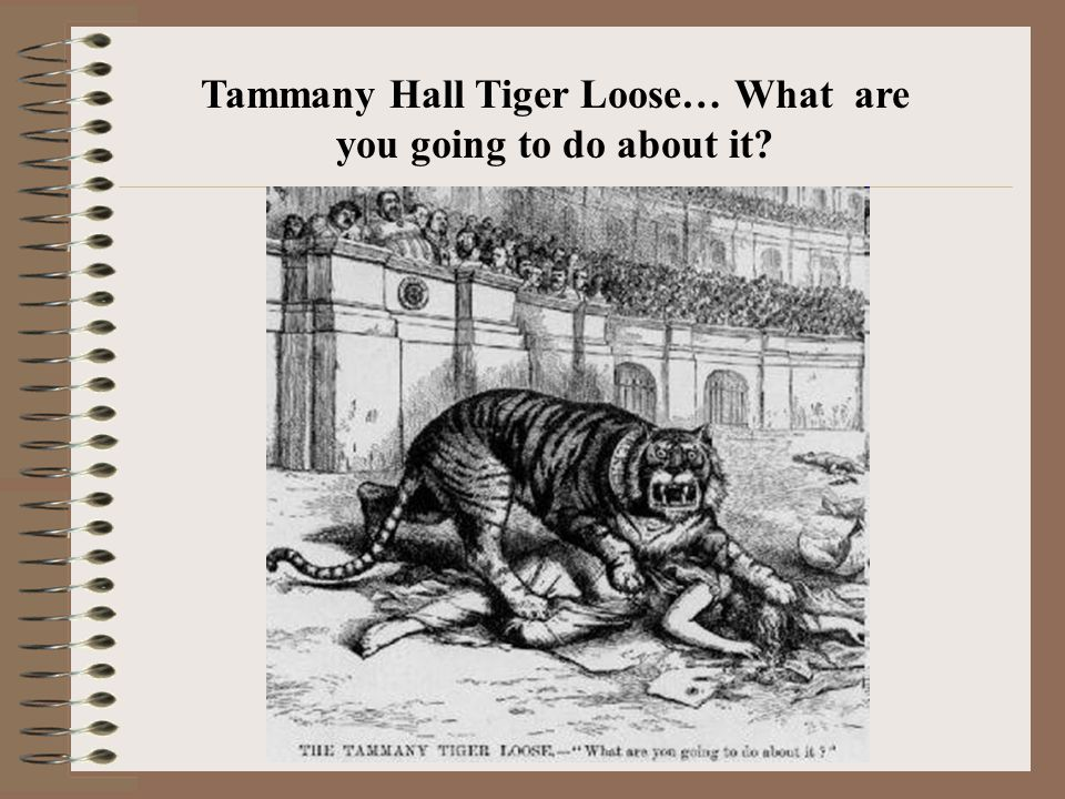 Tammany Hall Tiger Loose… What are you going to do about it