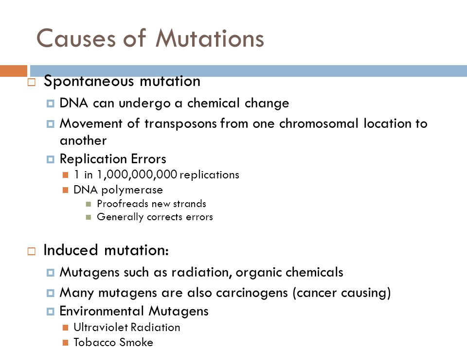 Causes of Mutations Spontaneous mutation Induced mutation: