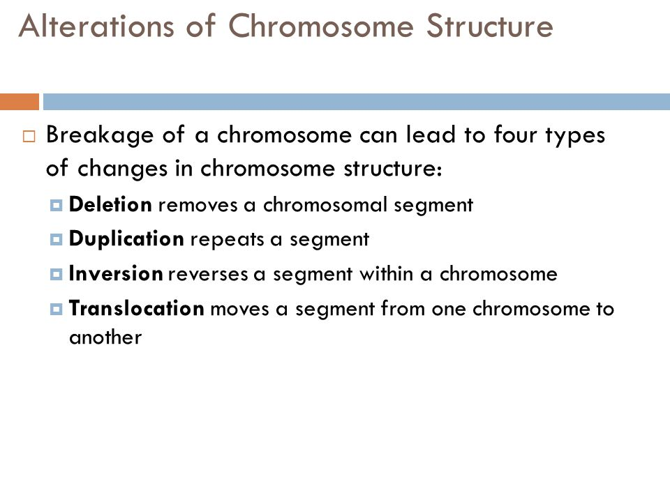 Alterations of Chromosome Structure