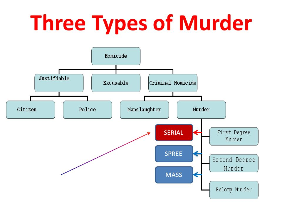 The concept and types of murders. Manslaughter