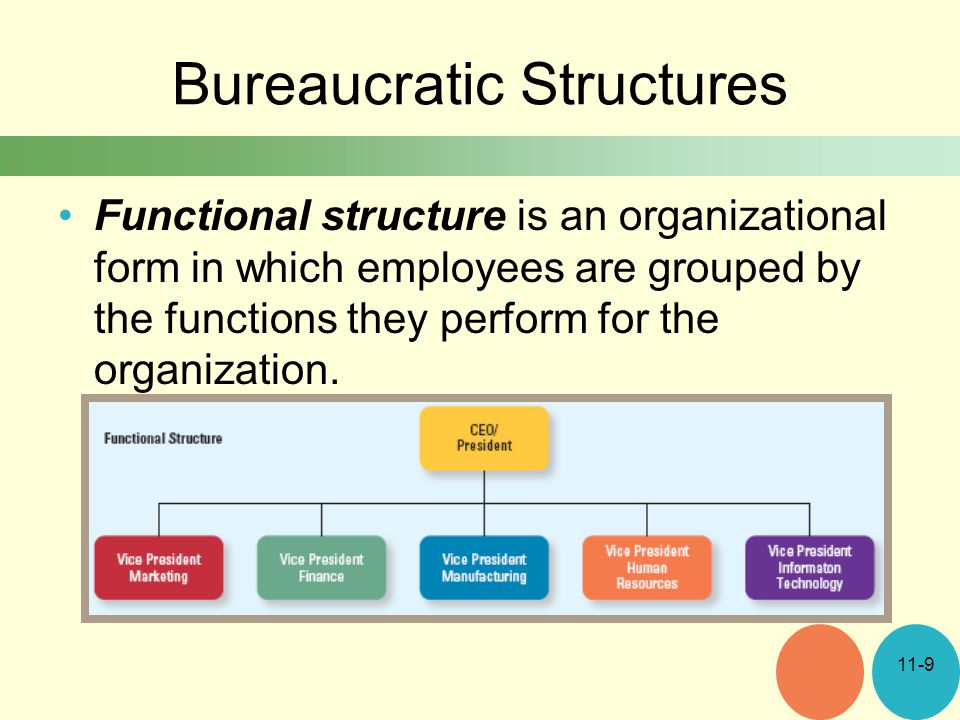 bureaucratic organization examples