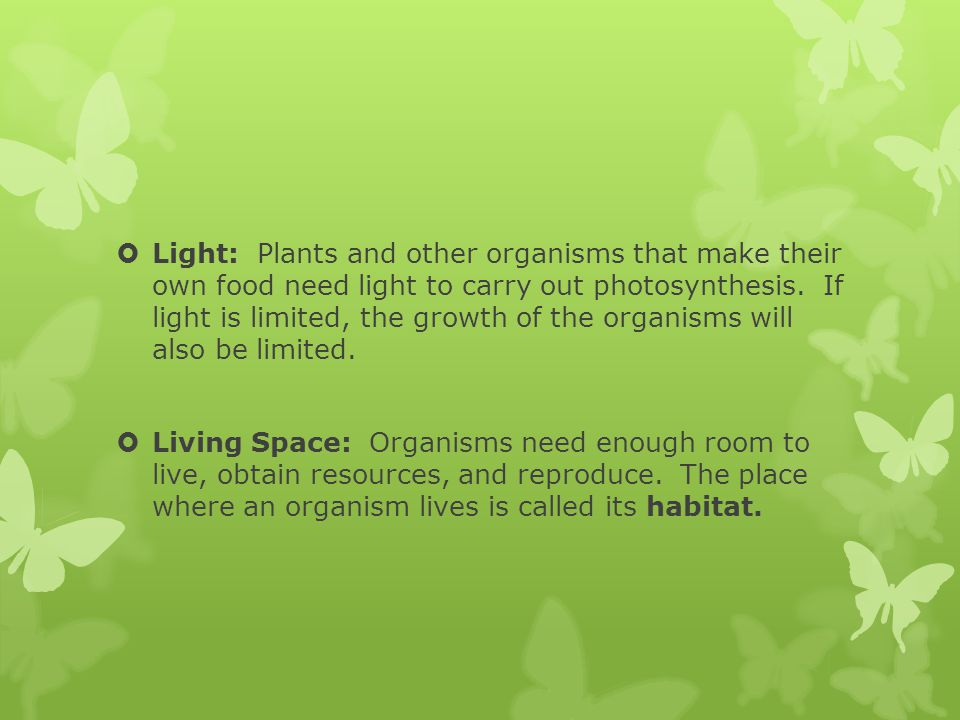 Light: Plants and other organisms that make their own food need light to carry out photosynthesis. If light is limited, the growth of the organisms will also be limited.