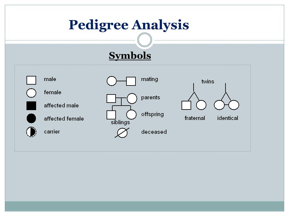 Pedigree Analysis Symbols