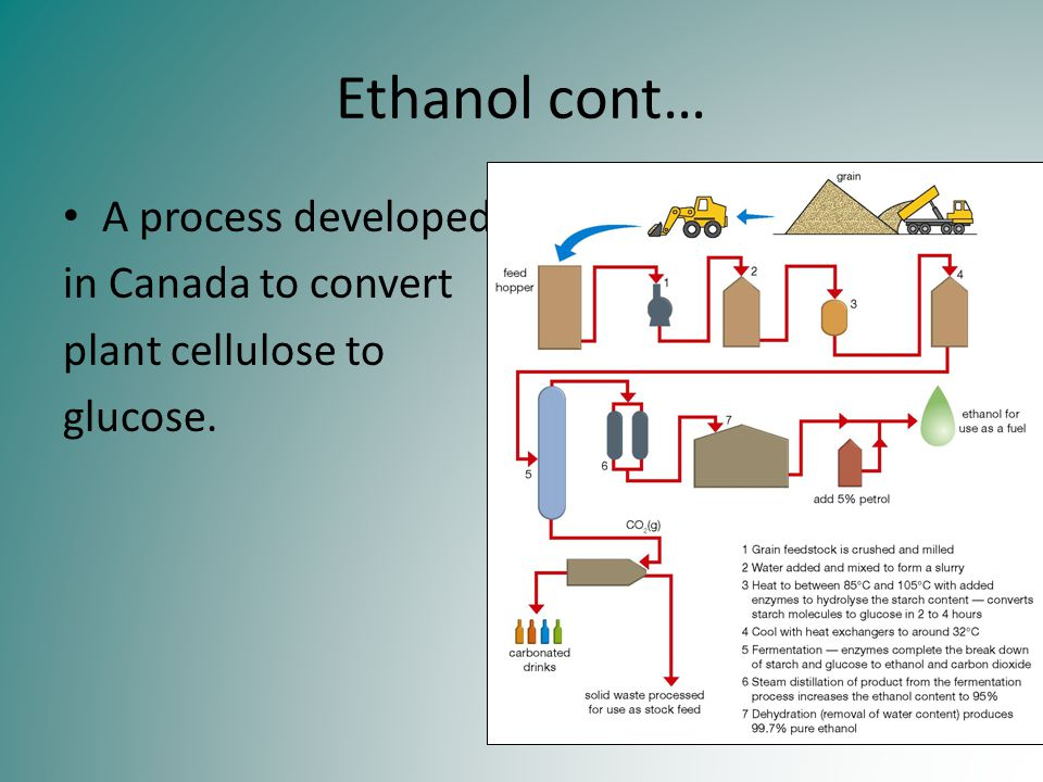 Ethanol cont… A process developed in Canada to convert