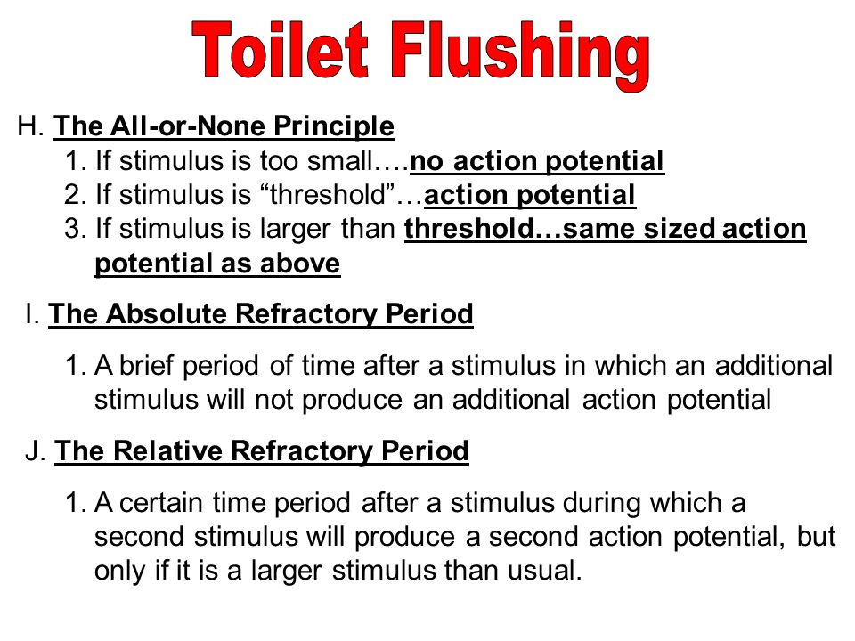 Toilet Flushing H. The All-or-None Principle