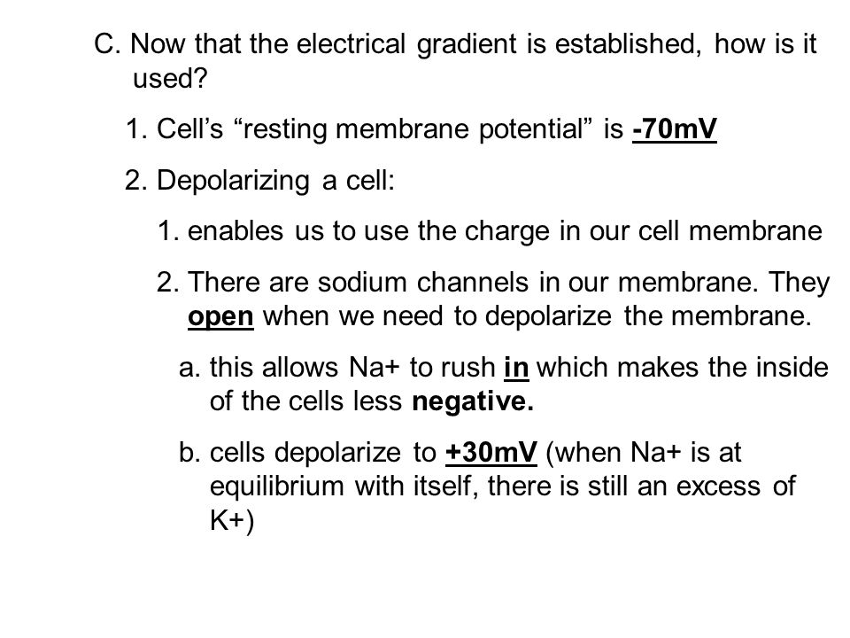 C. Now that the electrical gradient is established, how is it used