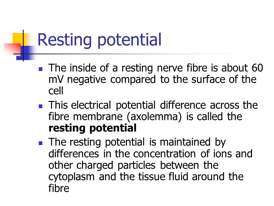 Resting potential The inside of a resting nerve fibre is about 60 mV negative compared to the surface of the cell.