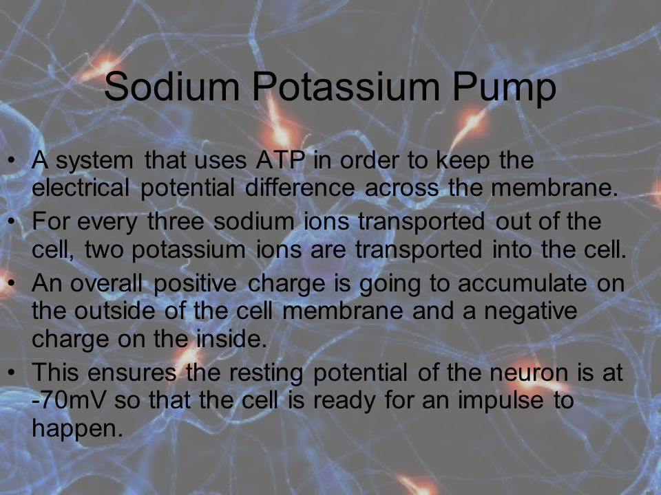 Sodium Potassium Pump A system that uses ATP in order to keep the electrical potential difference across the membrane.