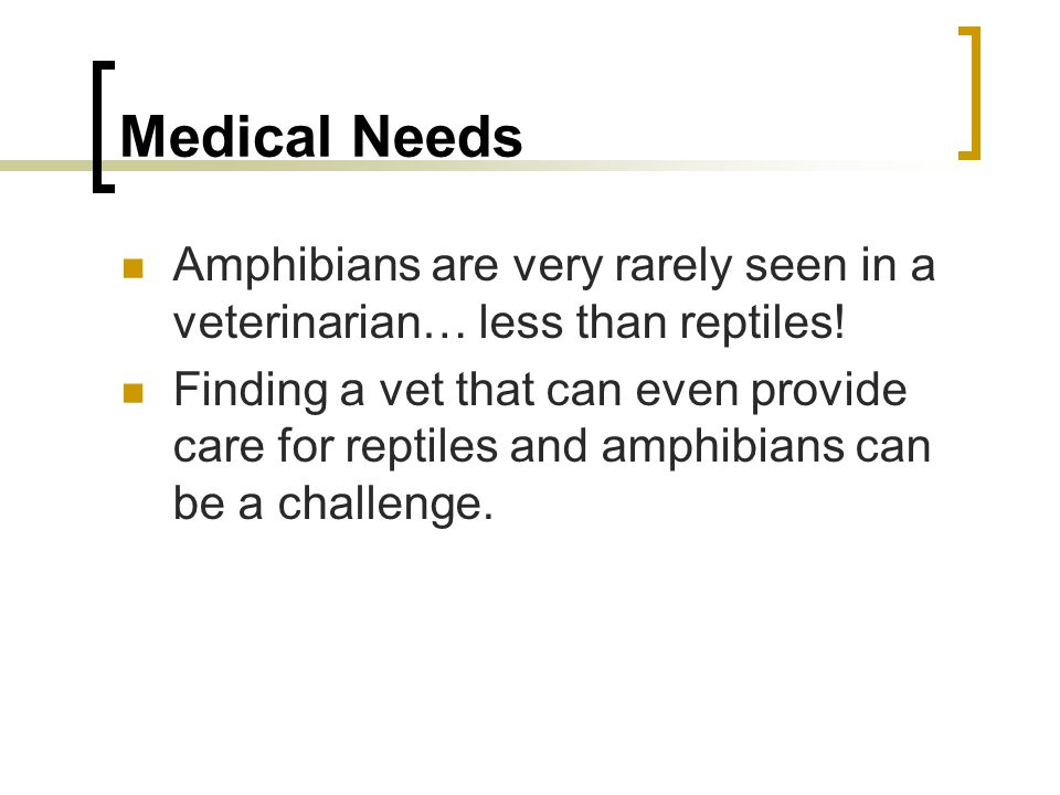Reptiles And Amphibians Ppt Video Online Download