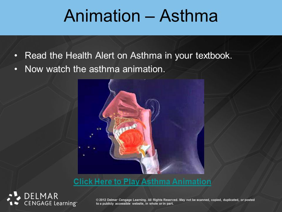 Animation – Asthma Read the Health Alert on Asthma in your textbook.