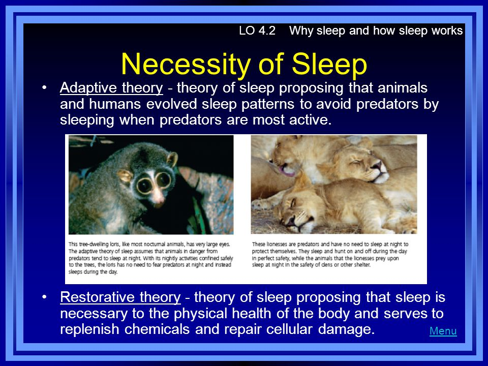 restorative theory of sleep