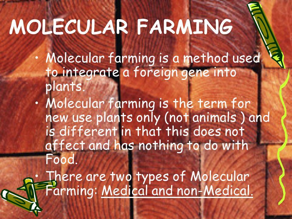 What is molecular farming? |authorstream.