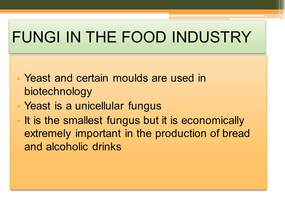 FUNGI IN THE FOOD INDUSTRY