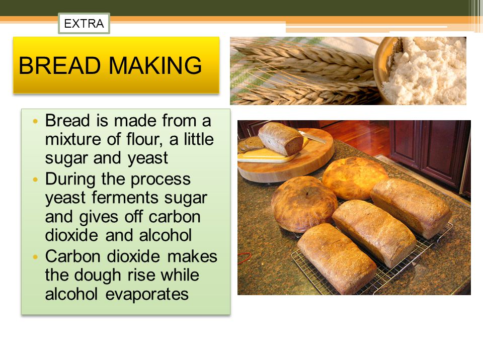 EXTRA BREAD MAKING. Bread is made from a mixture of flour, a little sugar and yeast.