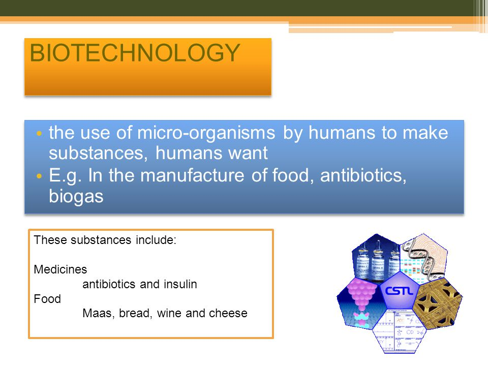 BIOTECHNOLOGY the use of micro-organisms by humans to make substances, humans want. E.g. In the manufacture of food, antibiotics, biogas.