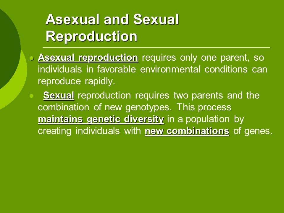 Source of genetic variation in asexual reproduction new combinations