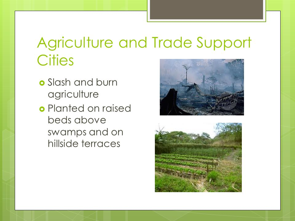 Agriculture and Trade Support Cities