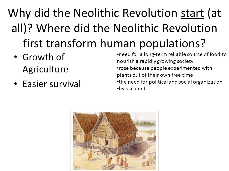 when did the neolithic revolution take place