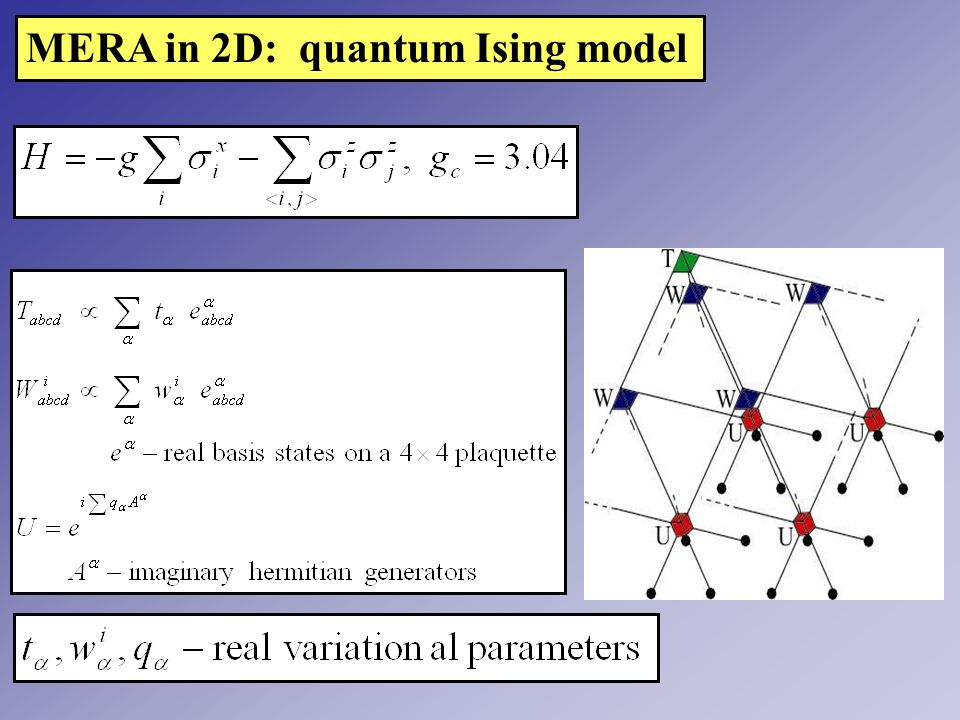 MERA in 2D: quantum Ising model